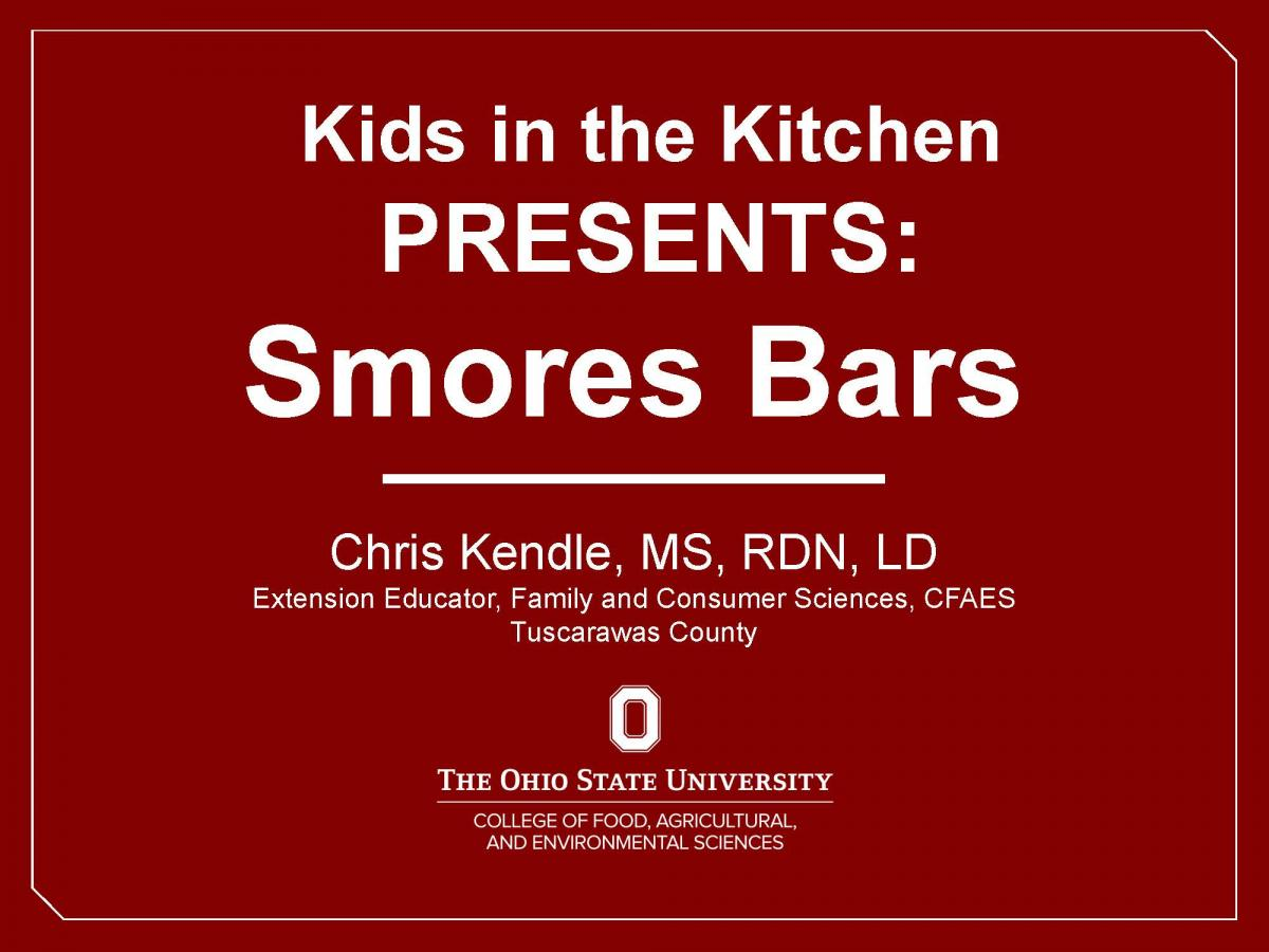 S'mores Bars Video