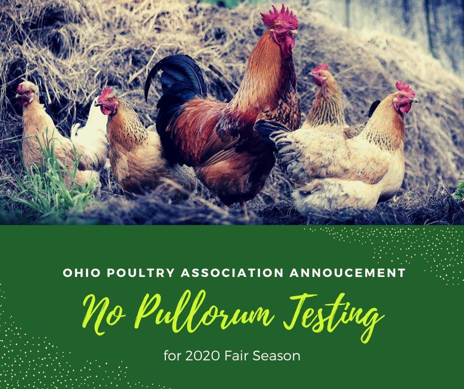 No Pullorum Testing
